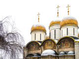 Domes of the Assumption Cathedral in Kremlin  Moscow  Russia