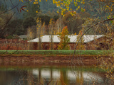 Pond House and Autumn Vineyard  Calistoga Napa Valley