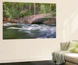 Flowing Merced River and Pohono Bridge  Yosemite