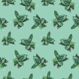 Watercolor Mint Pattern