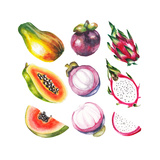 Watercolor Exotic Fruits Set