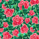 Watercolor Rose and Leafs Pattern