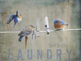 Laundry Day Bluebirds Giclée par Jai Johnson