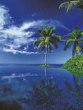 Paradise Dreams I