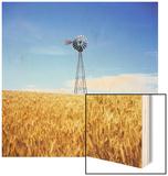 Windmill in Wheat Field