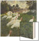Les Dindons (The Turkeys)