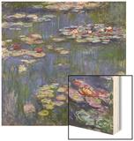 Water Lilies (Nympheas)  c1916