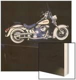 1996 Harley-Davidson  Custom Heritage Softail