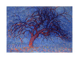 Avond (Evening): the Red Tree  1908-10