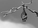 Sleepless Reproduction d'art par Tim Millar