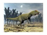 Allosaurus Dinosaur Walking Amongst Pachypteris Trees