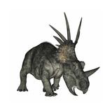 Styracosaurus Dinosaur