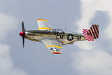A P-51 Mustang Flies by at Waukegan  Illinois