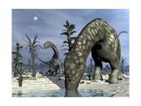 Argentinosaurus Dinosaurs Grazing in the Desert