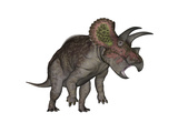 Triceratops Dinosaur Standing Up
