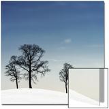 Winter Haiku Acrylique par Piet Flour