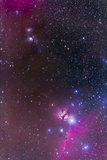 Messier 78 and Horsehead Nebula in Orion