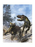 Ankylosaurus Hits Tyrannosaurus Rex with it's Clubbed Tail in Self-Defense