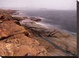 Contemptuous Sea