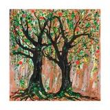 Pomegranate Tree  2012