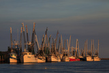 USA  Florida  Darien  Shrimp Boats Docked at Darien Ga