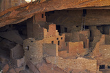 Colorado  Mesa Verde National Park  Cliff Palace  over 700 Years Old