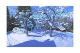 Winter Orchard  Morzine  2015