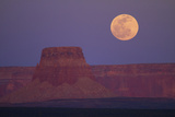 Moon Rising over Tower Butte Arizona  United States