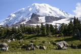 Mount Rainier National Park  Wa Spray Park