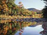 New Hampshire  White Mts Nf  Sugar Maple Reflect in the Swift River