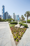 Small Park and Downtown Skyline of Dubai  United Arab Emirates