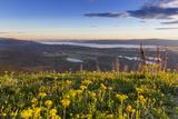 Groundsel  Swan Range Looking Down onto Flathead Lake  Montana