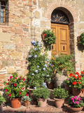 Italy  Tuscany Flowers by House in the Medieval Town Monticchiello