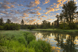 The Whitefish River at Sunrise Reflecting in Whitefish  Montana