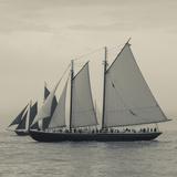 Massachusetts  Schooner Festival  Schooners in Gloucester Harbor
