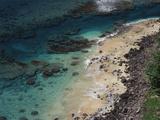 Hawaii  Kauai  Haena State Park  Coral Reef Near Kee Beach