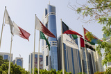 Flags in Park and Downtown Skyline of Dubai  United Arab Emirates