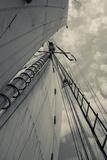 Massachusetts  Gloucester  Schooner Festival  Sails and Masts
