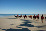 Western Australia  Broome  Cable Beach Camel Ride on Cable Beach