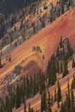 Colorado  San Juan Mts  Colorful Slopes of Anvil Mountain