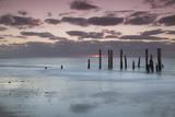 Australia  Fleurieu Peninsula  Port Willunga  Old Jetty  Dusk