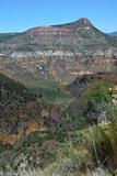 USA  Arizona  Black River of the Salt River Canyon