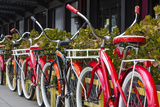 Australia  Victoria  Melbourne  Bicycles Outside Mars and Venus Bar