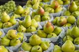 Canada  Montreal  Marche Jean Talon Market  Pears