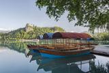 Slovenia  Bled  Lake Bled  Plenta Boats