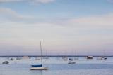 Massachusetts  Cape Cod  Provincetown  the West End  Boats