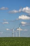 Minnesota  Dexter  Grand Meadow Wind Farm
