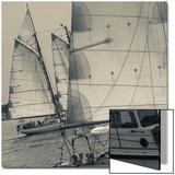 Massachusetts  Gloucester  Schooner Festival  Sail Boats