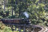 Australia  Victoria  Belgrave  Puffing Billy Steam Train