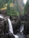 Elk Falls Park  Vancouver Island  Elk Falls Drops into a Deep Gorge